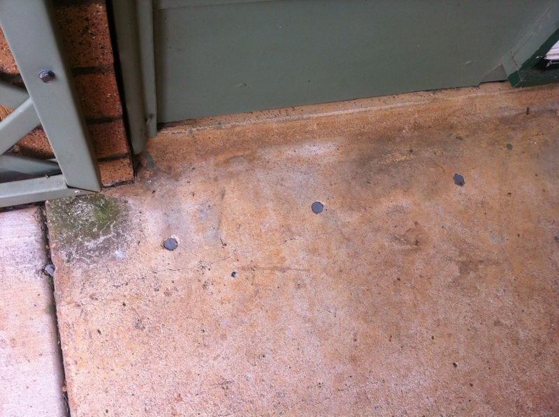 Brighton Termite Protection