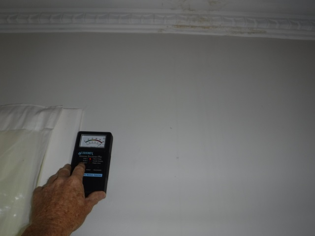 Stony Creek Termite Inspection